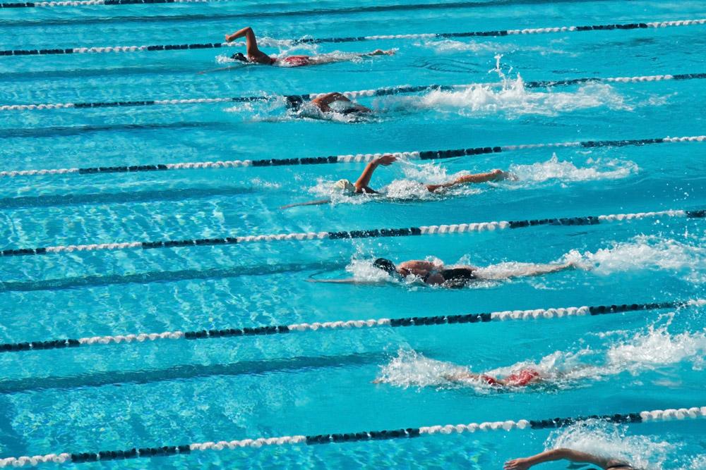 Offerta Campionato Italiano Nuoto Esordienti A Estivo